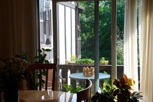 Clean Windows In Sunshiine